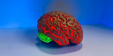 Neurohacking 201: Machine Learning tickets