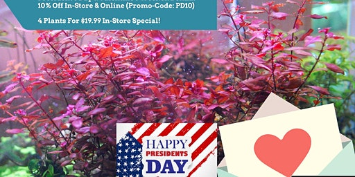 Weekend Sale For President's Day & Valentine's Day
