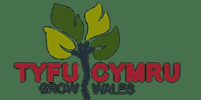 Welsh Flower Farmers PR Workshop