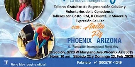 22-23 Febrero Talleres de Medicina Emocional Rene Mey tickets