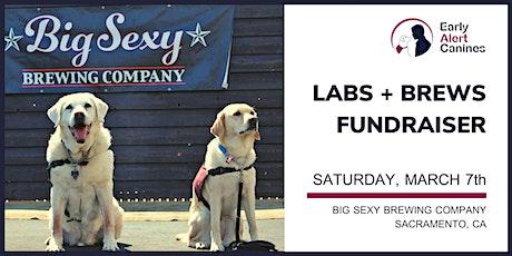 LABS + BREWS Fundraiser tickets