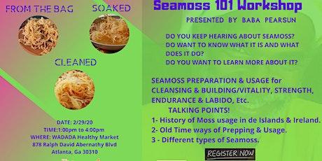 Seamoss 101 Workshop tickets
