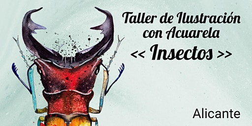 TALLER ILUSTRACIÓN CON ACUARELA: INSECTOS