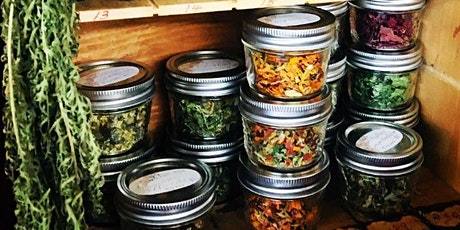"""""""What's in your cupboards?"""" Everyday Herbalism Workshop tickets"""