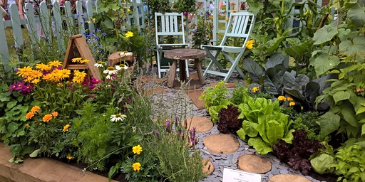 Making space for nature in small urban gardens