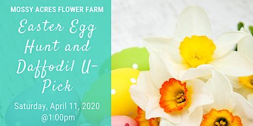Easter Egg Hunt & Daffodil U-Pick