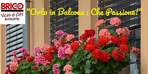 Orto in balcone : che passione !!!