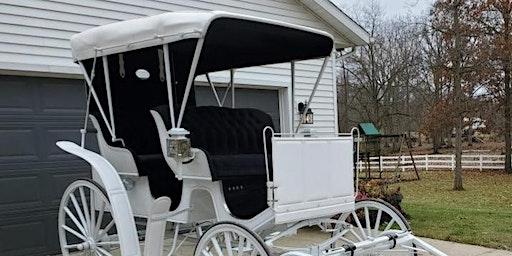 Niva Yoder's Arbonne Carriage Celebration