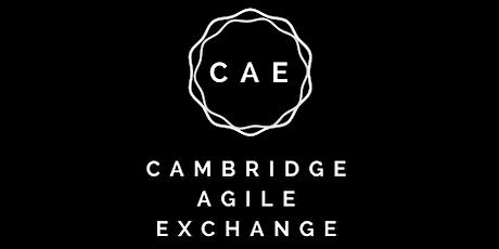 Cambridge Agile Exchange - April - The Debriefing Cube tickets