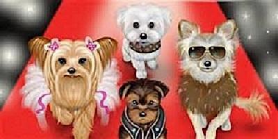 Furry Friends Fashion Show - Rescue Dogs Rockin the Runway