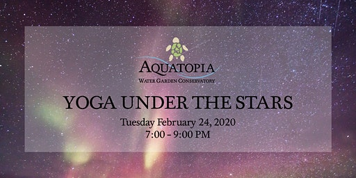 Yoga Under The Stars - Tuesday February 25 - 7:00pm to 9:00pm