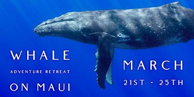 Whale Whisperer's Adventure Retreat