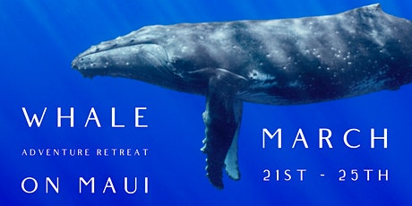 Whale Whisperer's Adventure Retreat tickets