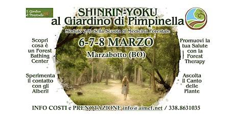 Scuola di Forest Therapy (Mod.2/6) biglietti