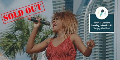 Simply The Best - Tina Turner Tribute Band