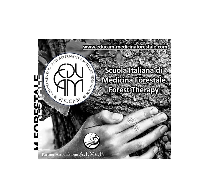 Immagine Scuola di Forest Therapy (Mod.2/6)