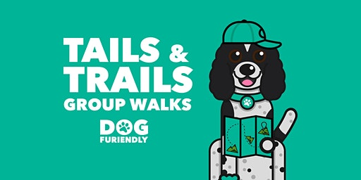 Tails & Trails Group Walk: Broughty Ferry Beach, Dundee