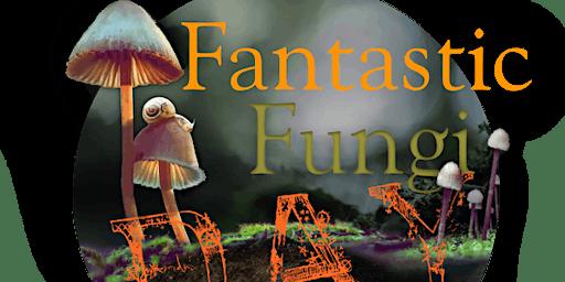 Fantastic Fungi Day
