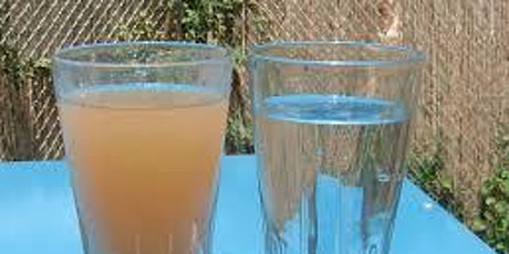 E-Coli Contamination - Chlorine Disinfection tickets