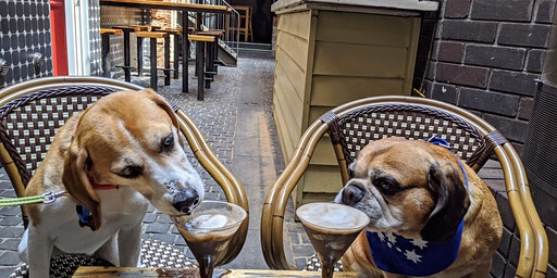 Richmond Puppy Pub Crawl