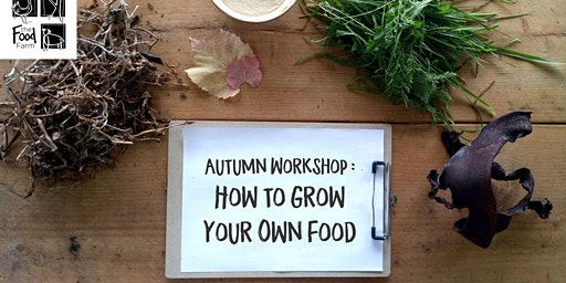 Grow Your Own Food; Saturday Autumn Workshop