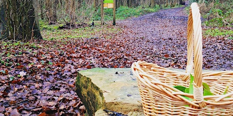 Foraging For Beginners : Strelley tickets
