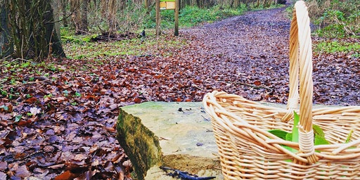 Foraging For Beginners :: Broxtowe Country Park