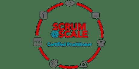 Certified Scrum@Scale® Practitioner - Frankfurt tickets