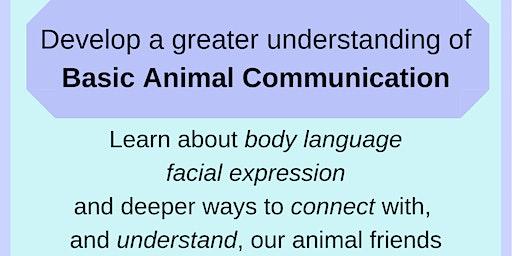 Basic Animal Communication