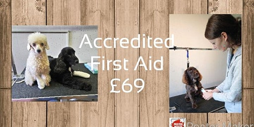 Canine First Aid Certificate