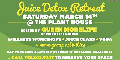 Juice Easy Detox Retreat  tickets