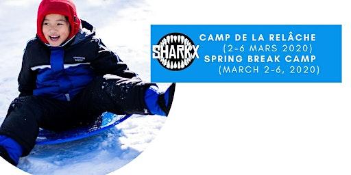 Camp de jour Relâche scolaire Sharkx March Break Day Camp 2020 (NDG)