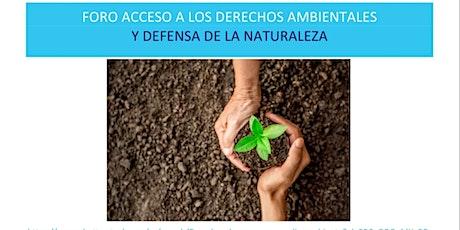 Acceso a los Derechos ambientales y Defensa de la Naturaleza boletos