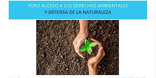 Acceso a los Derechos ambientales y Defensa de la Naturaleza