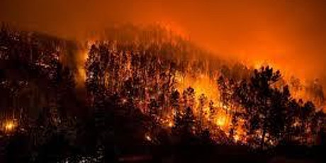 Xoc climàtic i vulnerabilitat: de la gestió d'incendis a la gestió de boscos, amb Marc Castellnou entradas
