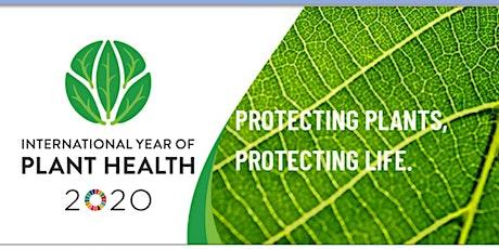 2020: Anno internazionale della salute delle piante biglietti