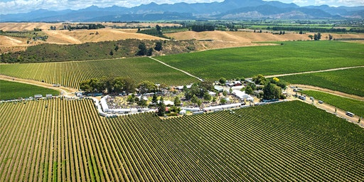 Marlborough Wine and Food Festival 2021