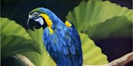 Sip'n Paint A COLORFUL PARROT at Atwood Lounge tickets