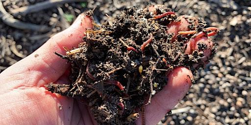 Beginners Worm Farm and Compost Notting Hill Neighbourhood House