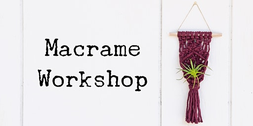 Beginner's Macrame Air Plant Hanger Workshop