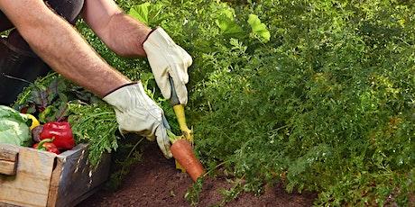 Vegetable Gardening for Beginners - Educational Seminar tickets