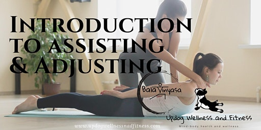 Intro to Assisting and Adjusting