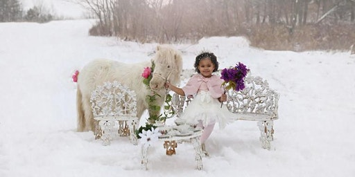 Unicorn Photo Sessions with Bak Pack Photography