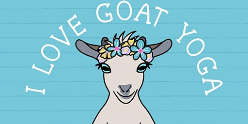 Goat Yoga with Baby Goats in Top Hats & Flower Crowns at Waterside!