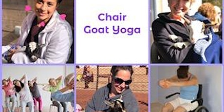 CHAIR Goat Yoga with Baby Goats in Top Hats & Flower Crowns! tickets