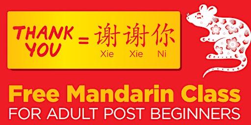 Mandarin Class for Adult Post Beginners