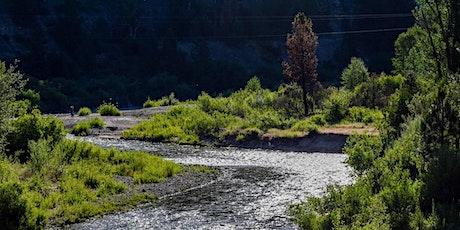 Field Trip: Daggett Creek Birding and Picnic tickets