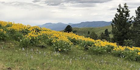 Field Trip:  Montour WMA and Sagehen Reservoir Bluebird Trail tickets
