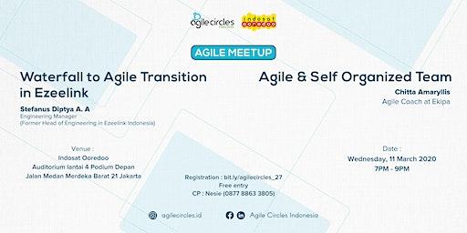 Agile Transition and Self Organized Team