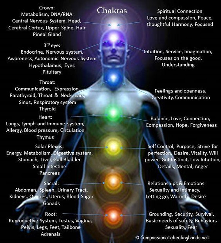 CHAKRA OPENING WITH SOUND HEALING AND LIVE MUSIC image